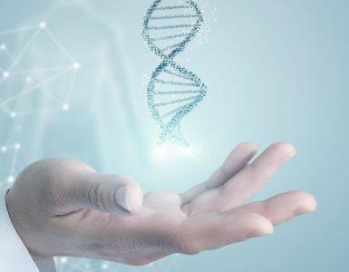 cómo influye la genética en el peso